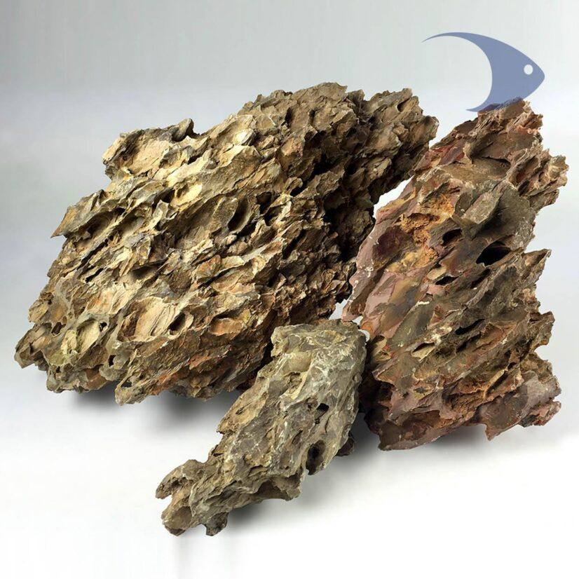 Rocas decorativas naturales Dragón Ideas Marinas
