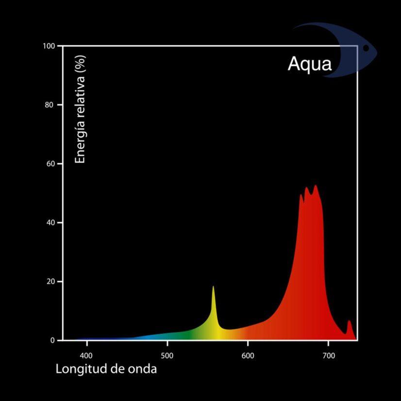 Focos fluorecentes DYMAX T5 Aqua