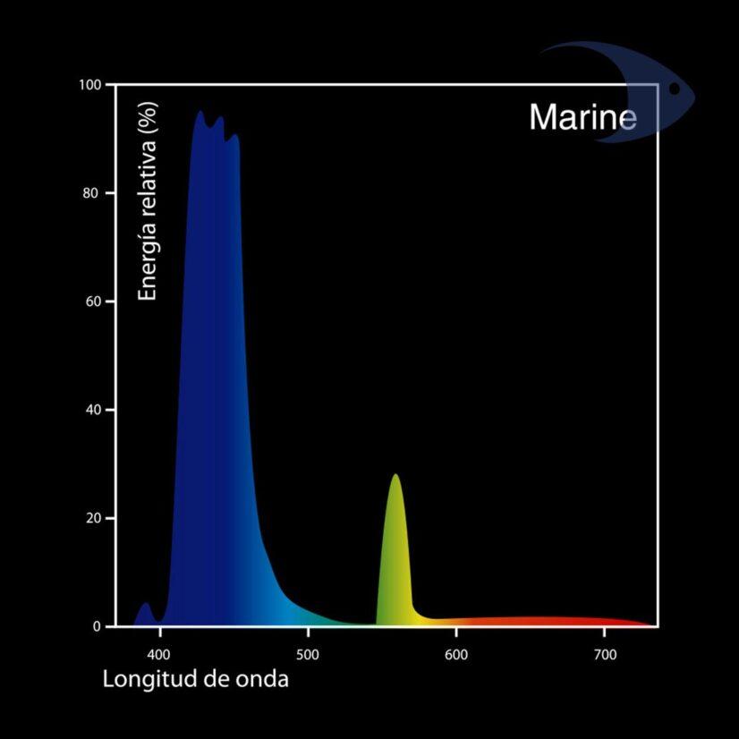 Focos fluorescentes DYMAX T5 HO Marine