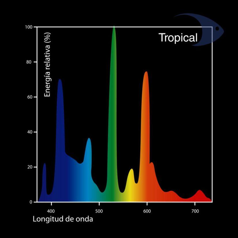 Focos fluorecentes DYMAX T5 Tropical