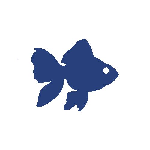 Ultra Fresh Peces Goldfish