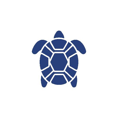 Ultra Fresh tortugas